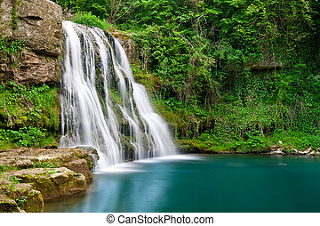 Waterfall in nature with clear water and green plants