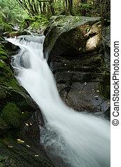 Torrent between the rock - Torrent flowing between the rock...