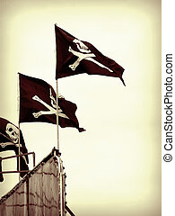 Pirate Flag - A close up on a pirate flag.