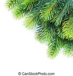 Kerstmis, boompje, Takken, grens, op, witte