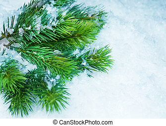 Christmas Tree over Snow Winter Background