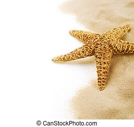 Starfish On The Sand Border Design Isolated On White...