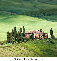 Tuscany landscape - belvedere - Scenic view of typical...