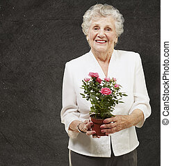 senior woman holding a flower pot against a grunge...