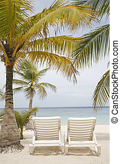 Tropical Beach Scene - Really nice tropical beach with empty...