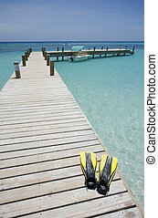Tropical Beach Scene - Long jetty in pretty tropical water