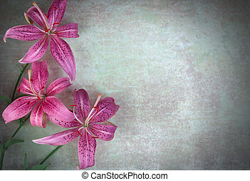Three lilies flowers on vintage background