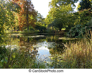Kew in the autumn - Vivid colours around pond at the Royal...