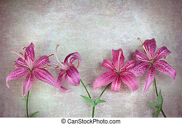 Pink lilies flowers on vintage background