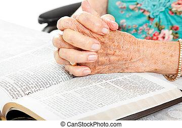 orando, Sênior, mãos, bíblia