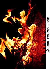 Girl shaped fire flames - girl shaped fire flames on a black...