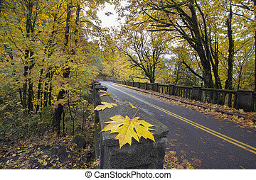 Autumn Along Historic Columbia Highway Bridge