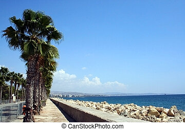 Palm Trees by beach - Palm trees by beach in resort of...