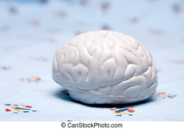 Brain - A rubber model of a brain on a hospital gown