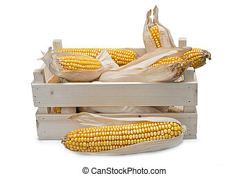 Wooden crate with corn ears - Wooden crate full of corn ears...