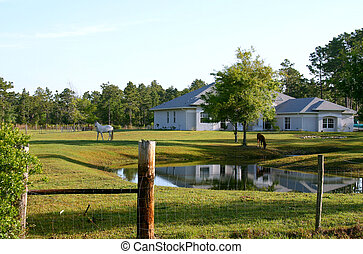 Horse Farm - Small horse farm in Central Florida showing...