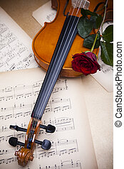 Old violin with red rose