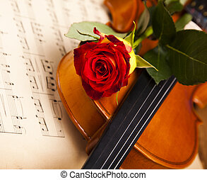 Old violin background with red rose