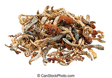 Pile of Magic Mushrooms - A pile of magic mushrooms isolated...