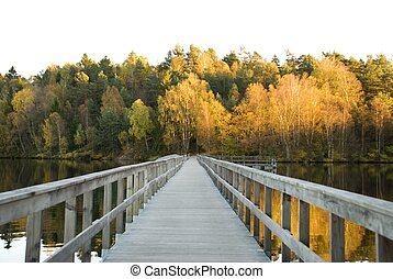 path over a lake in autumn - wooden bridge over a lake which...