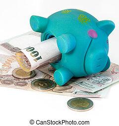 blu,  piggy, banca
