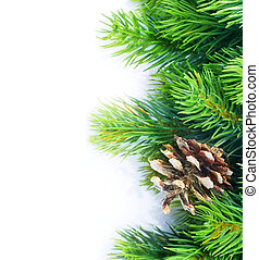 Christmas Fir Tree border over white