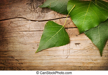 Green Leaves over Wood background