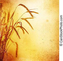 retro, trigo, orelhas