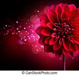 Dahlia, Outono, flor, desenho, sobre, pretas