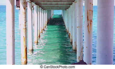 Under the Boardwalk Down by the Sea - A still shot of the...