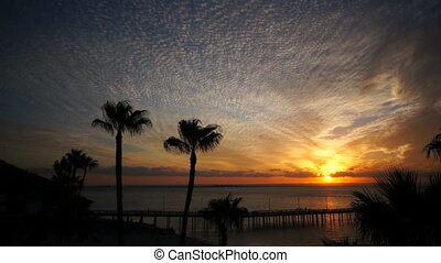 Orange Sunset with Pier and Palms