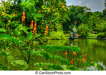 Greenery at the Botanic Gardens - Flowers and lush greens at...