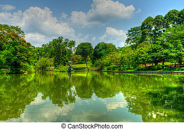 Singapore Botanic Gardens - The pond at the center of the...