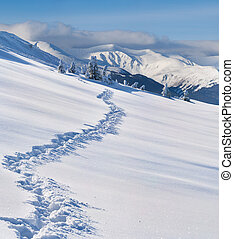 Trail in the snow-covered  mountains at winter