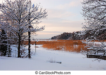 Winter landscape with rush on a frozen lake