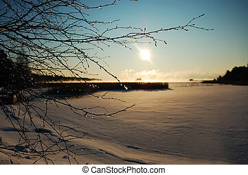 Sunny winter landscape with ice-covered branches in the foreground