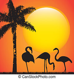 flamingo over late afternoon background, animal vector...