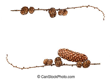 simple natural frame with pine cones and space for your text