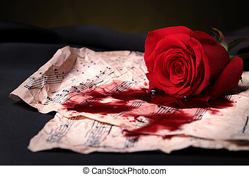 red rose,score and blood