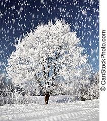Winter landscape with frozen tree