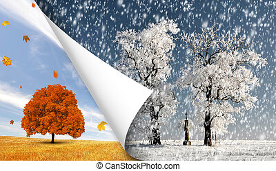 Autumn and winter landscape