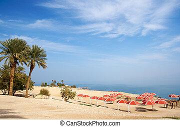 Ein Gedi - Israel - Ein Gedi oase at the Dead Sea. Israel