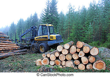 Forwarder at Logging Site - Forwarder and stacks of logs at...