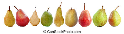 varieties of pears in front of white background