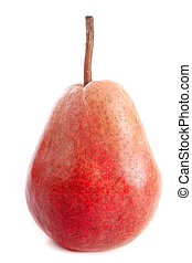 Louise Bonne pear in front of white background