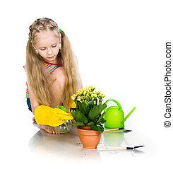 Flower Girl sprinkles on a white background
