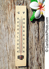 Thermometer on the wooden wall