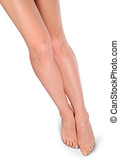 Long Beautiful Woman Legs Isolated on the White Background