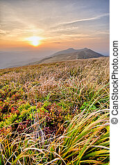 Carpathian mountains - Bieszczady - part of Carpathian...