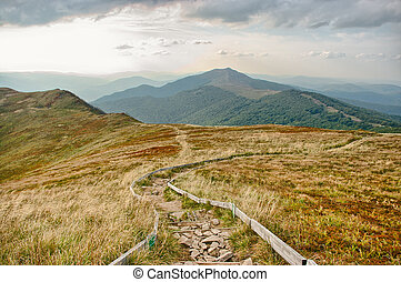 Road in the mountains - Road in the Carpathians mountains